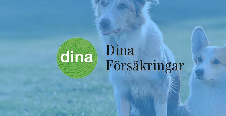 dina försäkringar omslagsbild hundförsäkringar