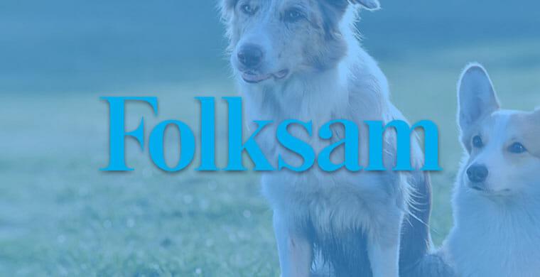 folksam hundförsäkring omslag