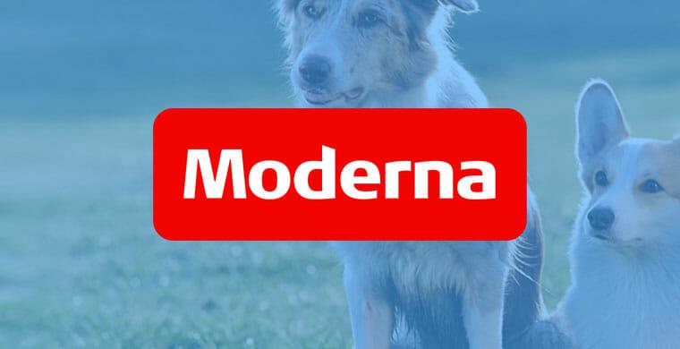 moderna hundförsäkring logo