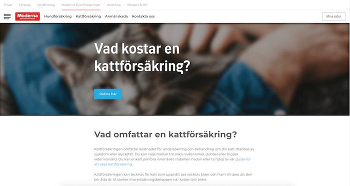 moderna hemsida för kattförsäkring