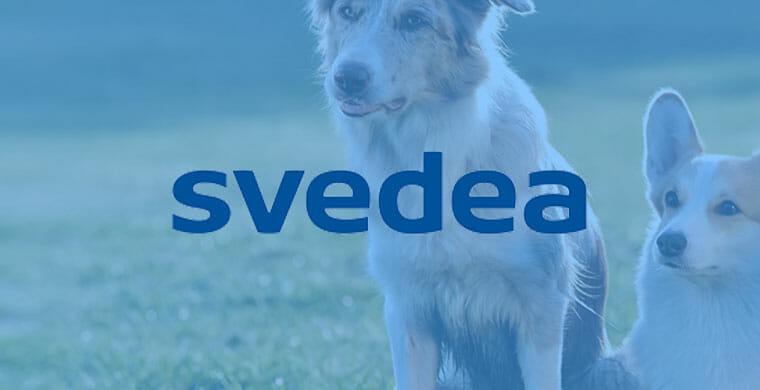 svedea omslagsbild hundförsäkring