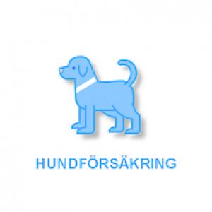 hundförsäkring symbol