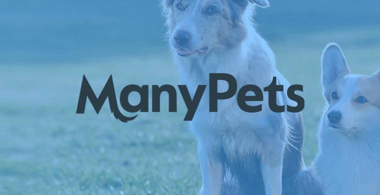 manypets-hundförsäkring