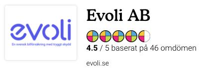 Evoli-reco-bild